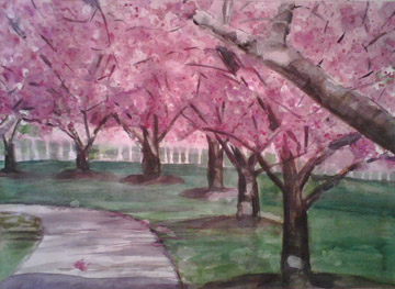 cherry-blossoms-still-in-progress-jan-2008.jpg