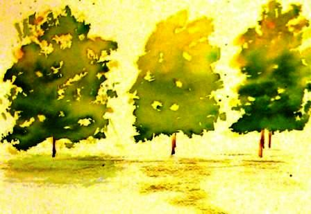 Tree Study 3   9-16-09