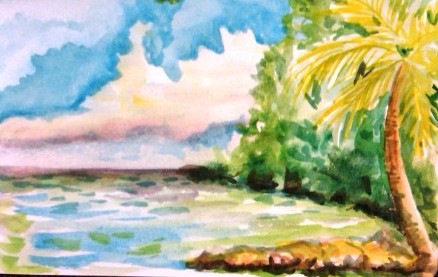 Carambola Beach 1