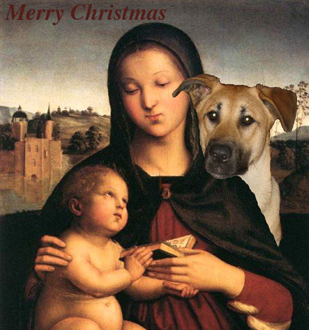 Madonna and Child…with dog | Carol King: drawing, painting, complaining