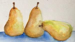 Pears 1-25-2014