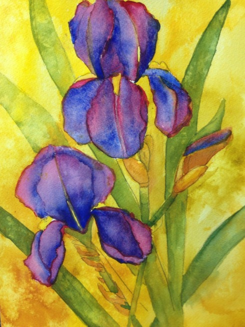 Watercolor Iris from the painted prism Feb.2014