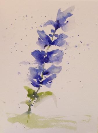 Gayle's flowers 9-7-2014