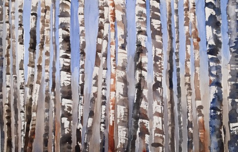 birch trees 3-1-15