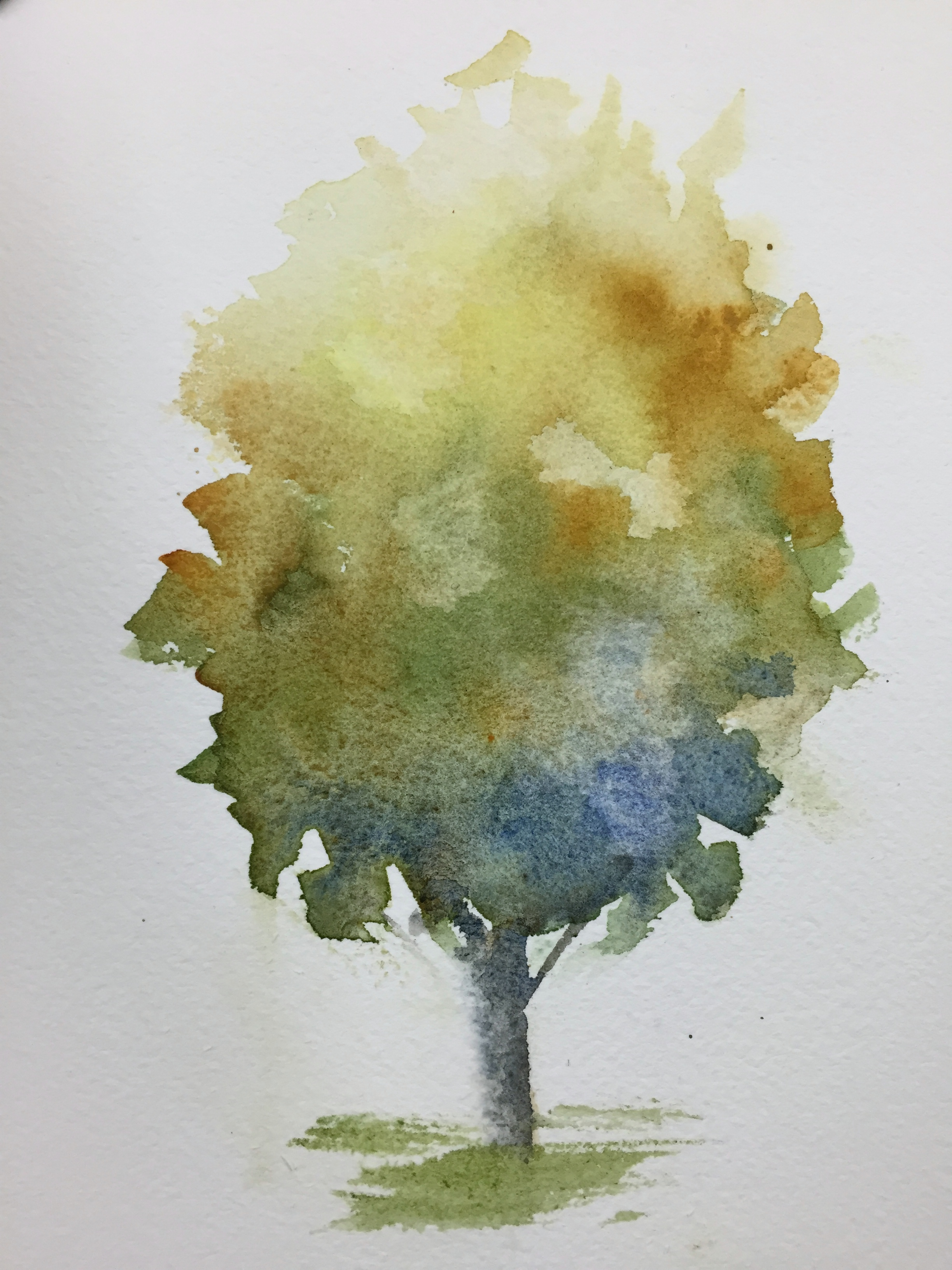 watercolor trees | Carol King: drawing, painting, complaining