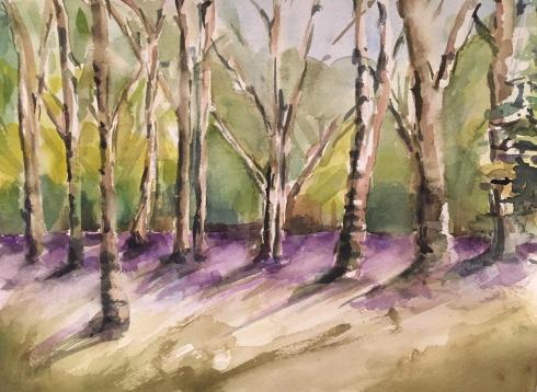 trees 8-18-2015