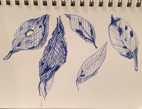 Inktober leaves 10-4-15