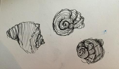Inktober shells