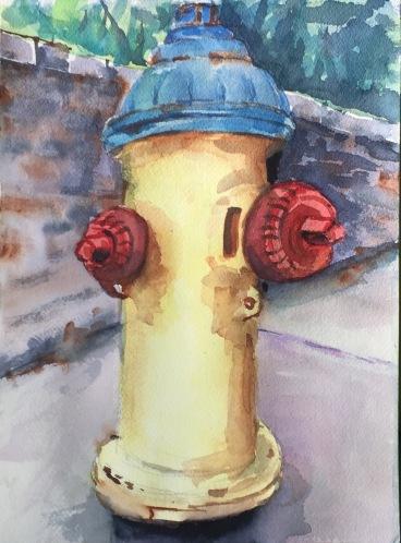 asheville fire hydrant